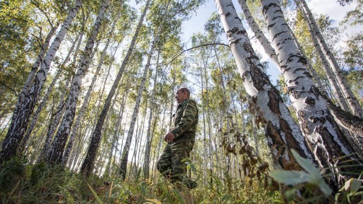 «ШОС не обошёл стороной»: рассказываем, кто и от чего защищает леса под Челябинском