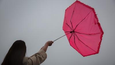 «Можно я сегодня не приду. На улице ветрено»: можно ли не ходить на работу из-за урагана