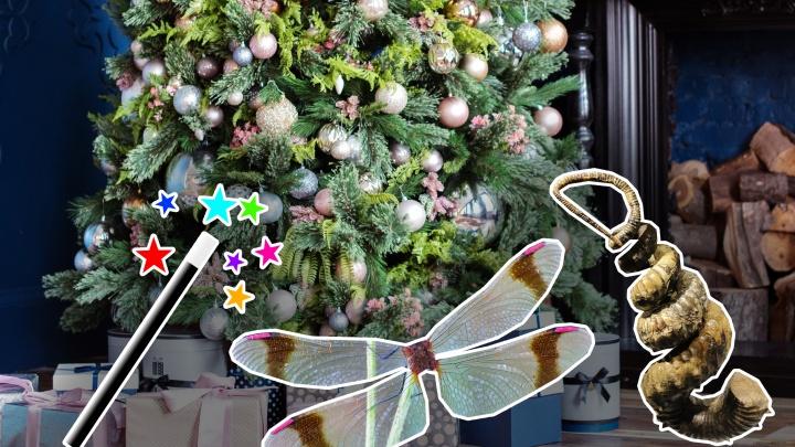 Чемодан и гетероморфный аммонит: ростовчане — о странных подарках, которые просят дети на Новый год