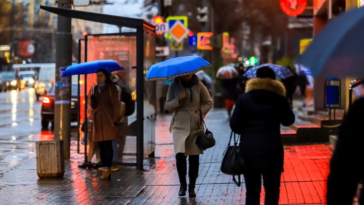Зима подождет: к какой погоде готовиться ростовчанам на этой неделе