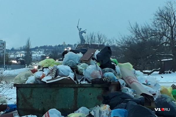 Волгоград продолжает зарастать мусором