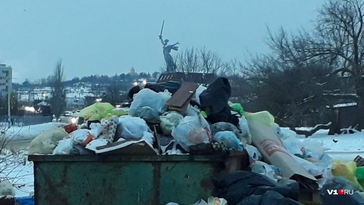 «Идёт проверка»: волгоградская прокуратура проверяет тарифы на отходы и мусорного регоператора