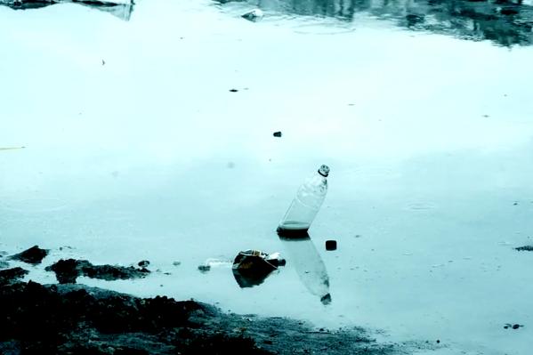Ролик об опасности загрязнения воды принёс новосибирцам победу на всероссийском конкурсе