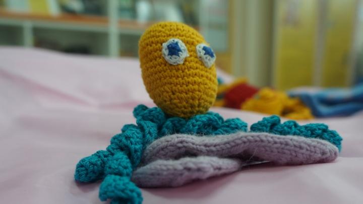 Осьминожка спасет жизнь: рукодельницам Поморья предлагают связать игрушки для недоношенных детей