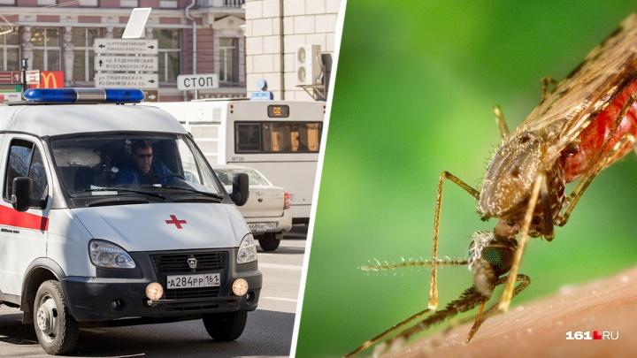 Малярия и лихорадка Западного Нила: какие опасные болезни осенью на Дону переносят комары