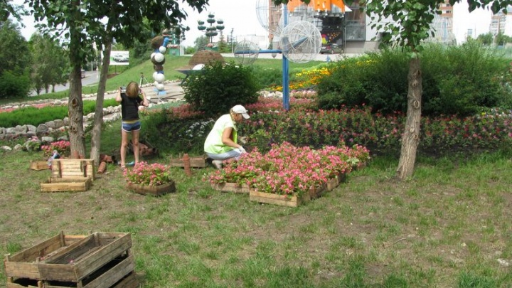Ко Дню Победы город украсят цветники общей площадью 5 тысяч квадратных метров