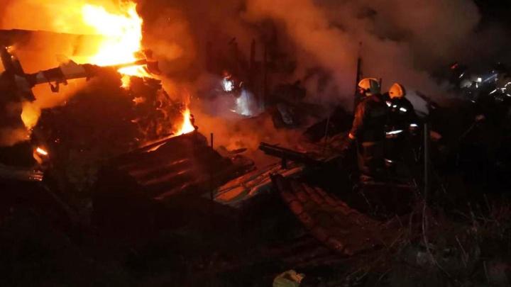 На Владивостокской пожарные спасли из огня собаку