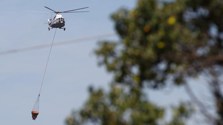 МЧС предупредило о сохранении чрезвычайной пожароопасности в Волгоградской области