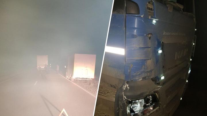 На тюменской трассе грузовик MAN насмерть сбил пешехода, идущего вдоль дороги