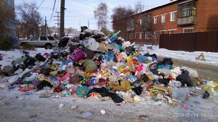 «Украшение района — мусорная гора»: свалка на улице Арктическая растёт вопреки сразу трём УК