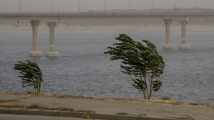 Гроза и сбивающий с ног ветер: МЧС предупреждает волгоградцев о непогоде