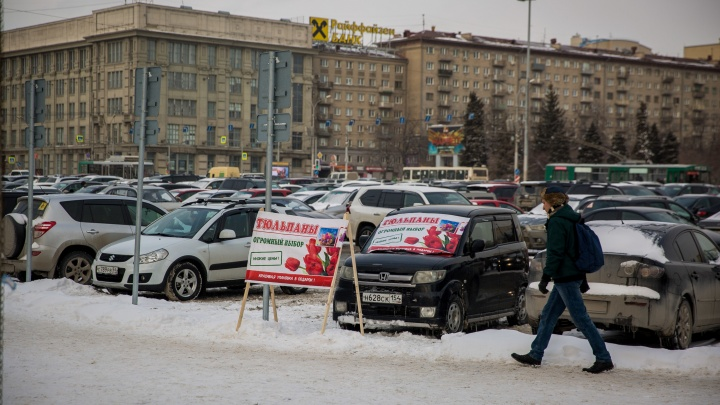 Скоро на каждом углу: на площадь Ленина приехали машины, набитые тюльпанами