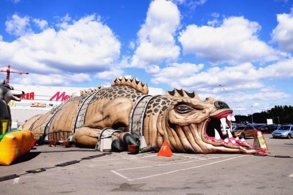 Высота дракона — 8 метров