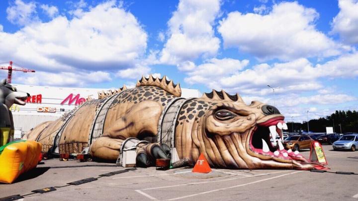 50 метров в длину и 12 в ширину: напротив «Радуга-парка» появился огромный надувной дракон