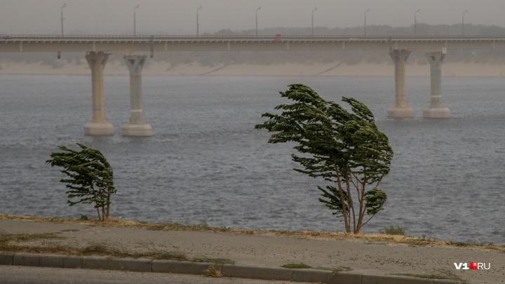 Гидрометцентр: в Волгограде ожидается усиление ветра до20 м/с и ливни с грозами