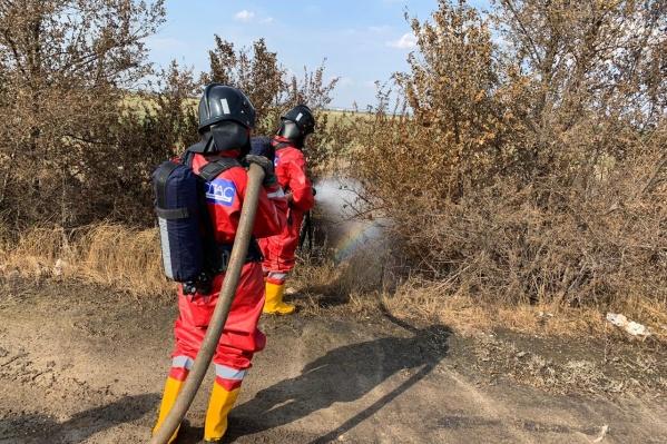 Соляная кислота поразила 800 квадратных метров земли вместе с деревьями и растениями