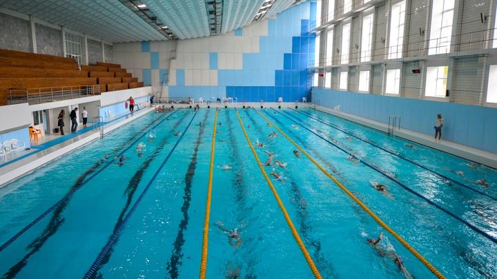 Бассейны открылись! Где и за сколько можно поплавать в Екатеринбурге