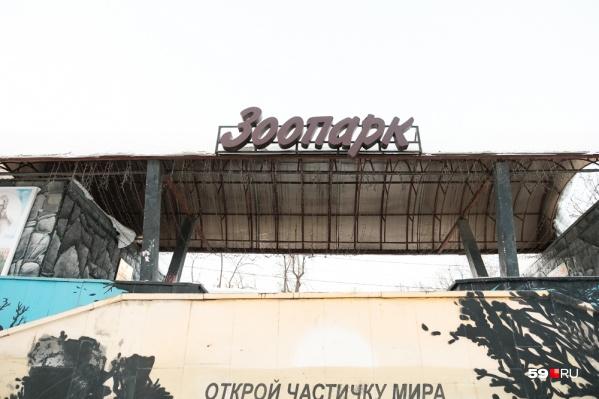 Пока должность директора Пермского зоопарка исполняет руководитель его ветеринарного отдела