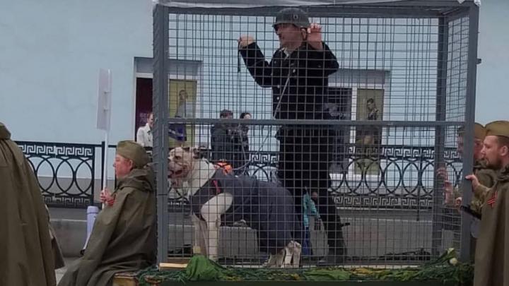 В Нижнем Тагиле на параде Победы провезли фашиста в клетке с собаками