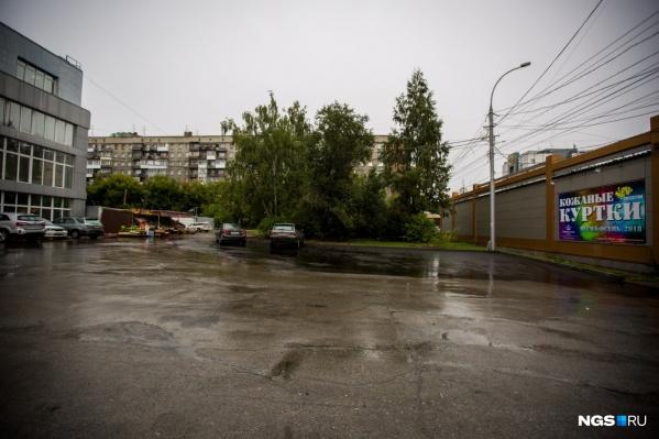 За спиленные деревья собственник участка заплатил почти 300 тысяч