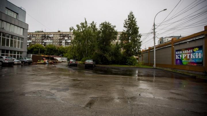 Им заплатили: за вырубленные у ЦУМа деревья мэрия получила 270 тысяч