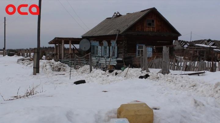 «Зеленцы не померли»: под Ачинском семья с двумя детьми осталась единственными жителями деревни