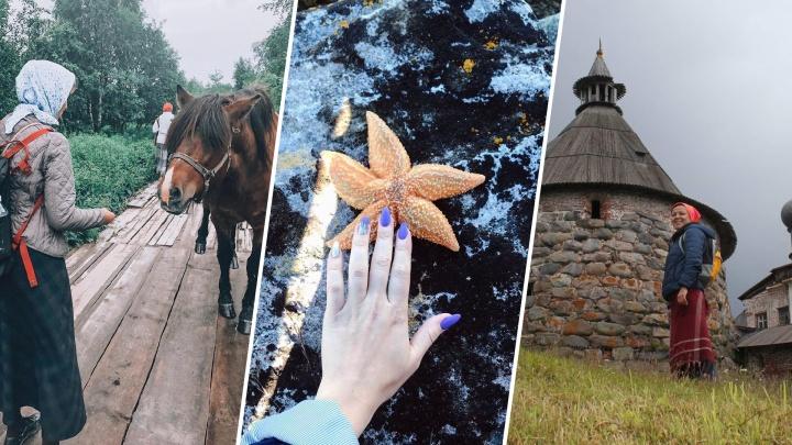 Студёное море, дыхание истории и деревенская быль: инстаподборка, после которой хочется на Соловки