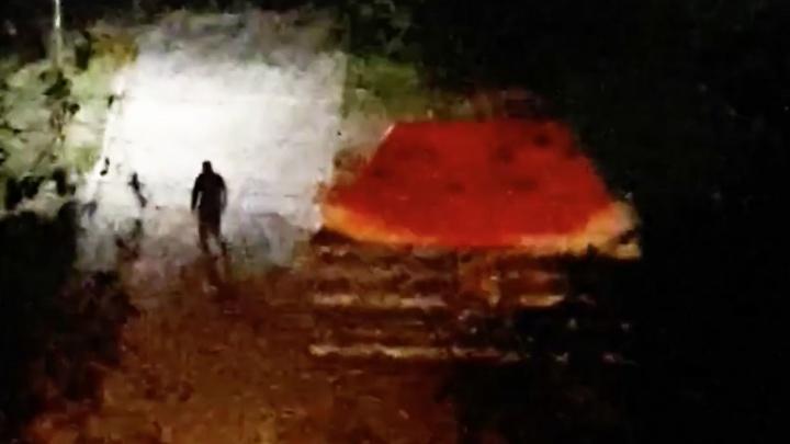 В Заволжском районе обокрали палатку с арбузами