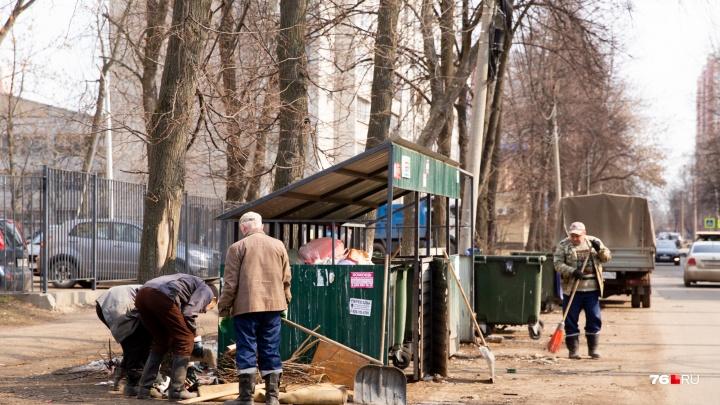 «Финансирование не предусмотрено»: убирать мусор у контейнерных площадок будут управдомы