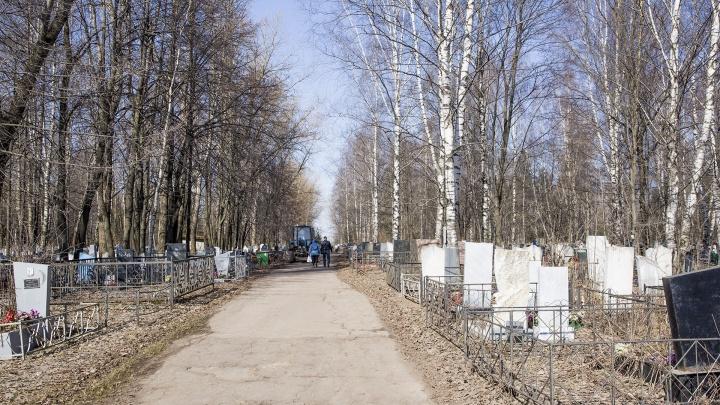 В Ярославской области банда обворовывала кладбища