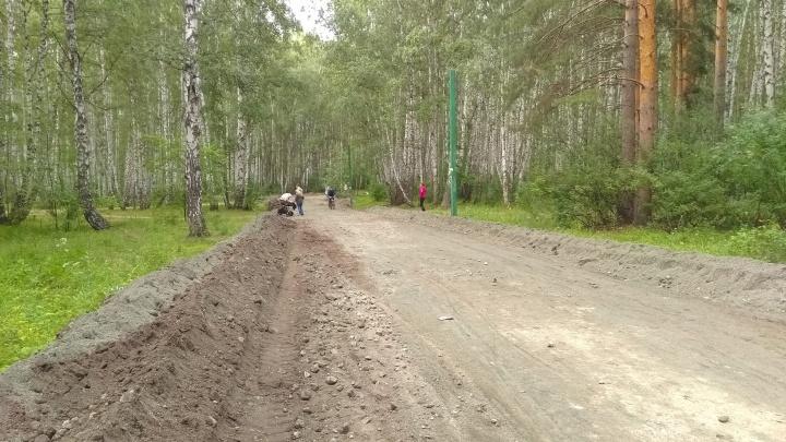 «Испохабили место для прогулок»: в челябинском парке прошлись бульдозером по любимой тропе горожан