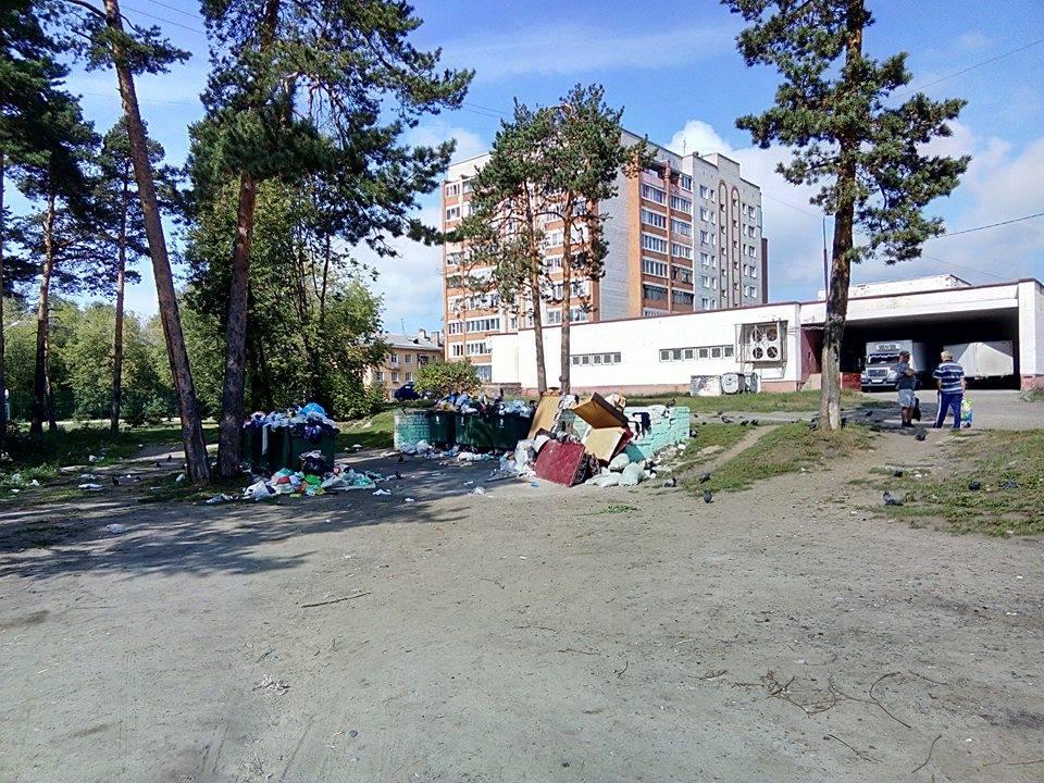 С 1 сентября ярославские дворы стали превращаться в большие помойки