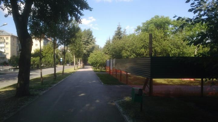В сквере Славы открыли дорожки для пешеходов