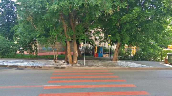 Недалеко от площади Калинина сделали пешеходный переход — он упирается в газон с деревом