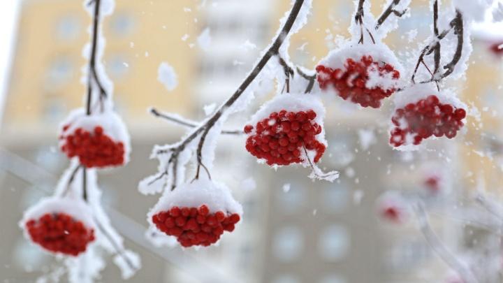 Гололедица и мокрый снег: погоду в Башкирии определит атмосферный фронт