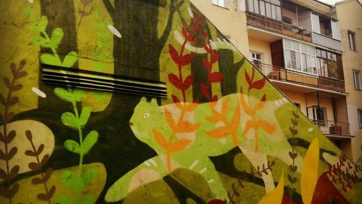 Уличные художники разрисовали граффити двор в центре Новосибирска