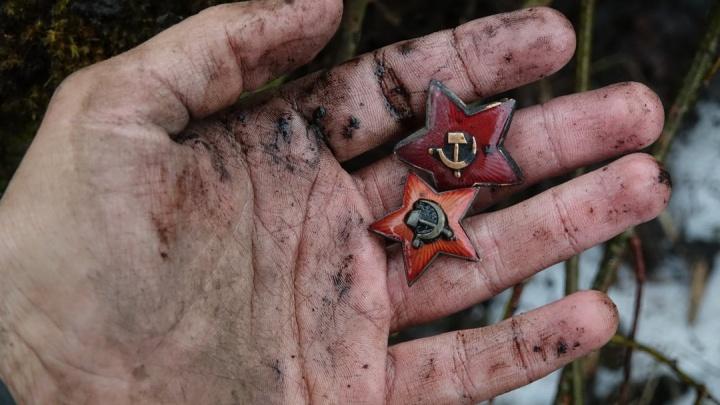 На пляже под Новороссийском нашли останки ростовчанина, защищавшего плацдарм Малая Земля