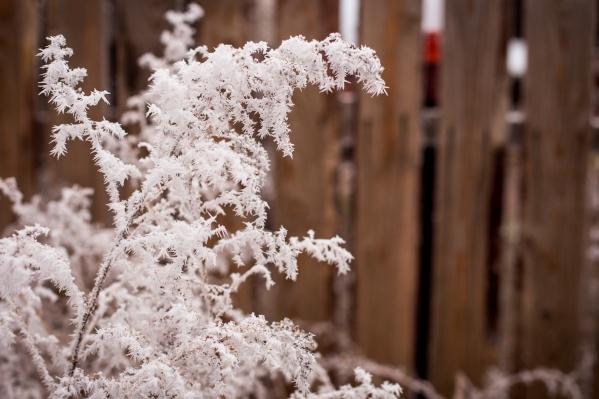 Сразу после дождя и снега ждут заморозки