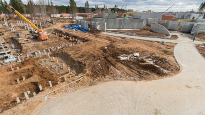 Строительство нового зоопарка в Перми подорожало на 600 миллионов рублей