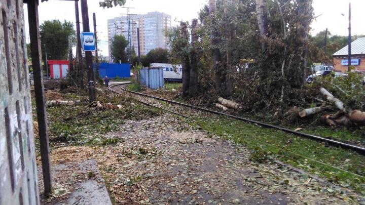 Энергетики завалили пути к трамвайной остановке спиленными деревьями