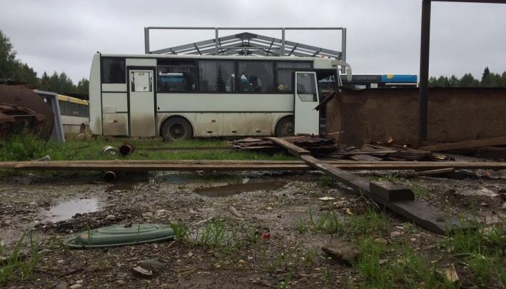 В Перми автобусы маршрута № 49 частично вернулись на линию