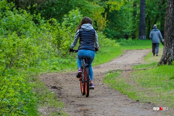Велосипедистов в Черняевском лесу немало