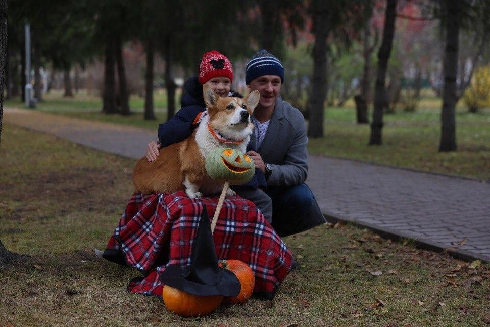Скачать свои снимки с благотворительной фотосессии новосибирцы смогут из соцсети