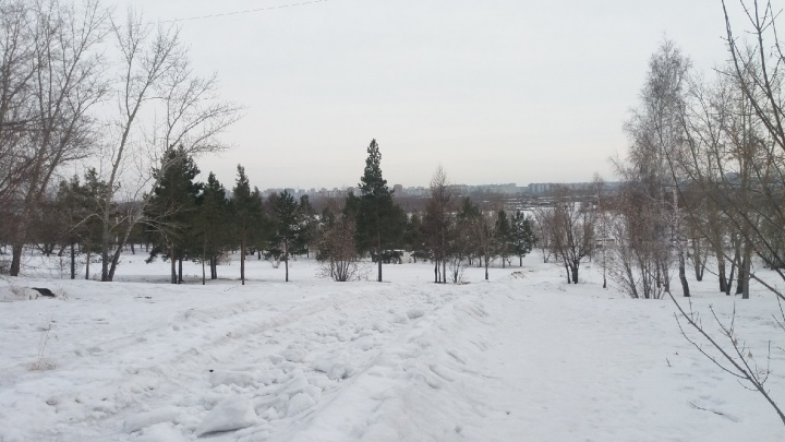 Омичка проколола лёгкое в Советском парке. Там заявили, что она каталась на запрещённом спуске