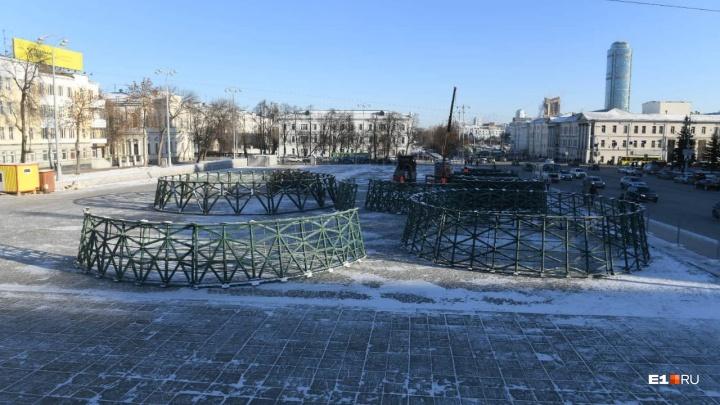Новый год уже близко: на площади 1905 года начали устанавливать елку