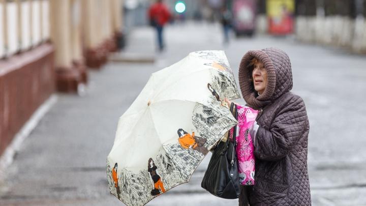 Весна сделает паузу: на Волгоградскую область летит штормовой ветер с дождями и снегом