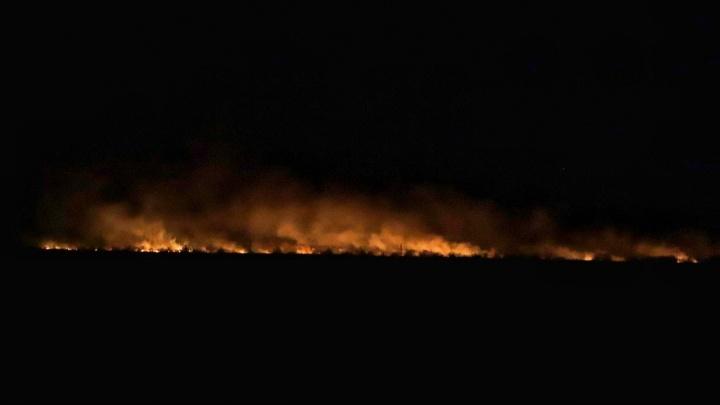 В Ростове потушили крупный ландшафтный пожар