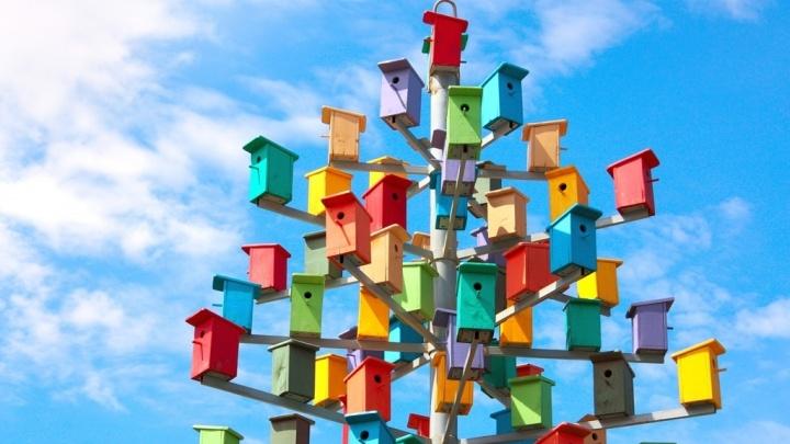 «Скворечник по ГОСТУ»: в Перми появился дом для ста птиц