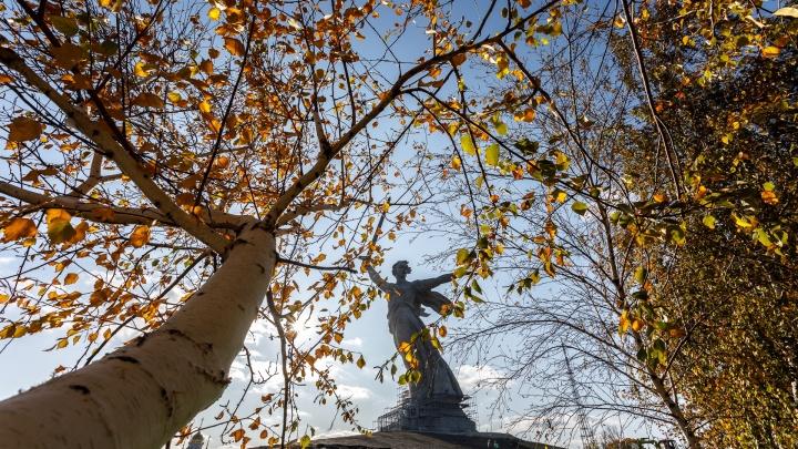 «О финале скажем только в апреле»: в Волгограде «Родина-мать» сбросила с себя строительные леса