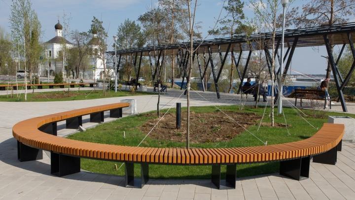 В Волгограде на 220-летие Александра Пушкина устроят опен-эйр